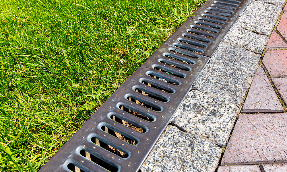Arbor Masters can do drainage